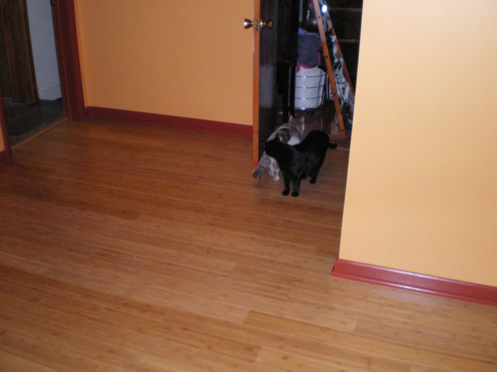 Cleaning Bamboo Flooring Bad News For House Cleaners And